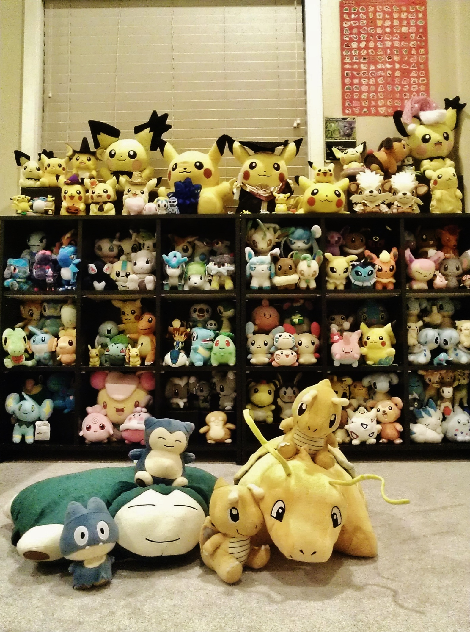 Introductory Post & Collection Photos =]: pkmncollectors - photo#50