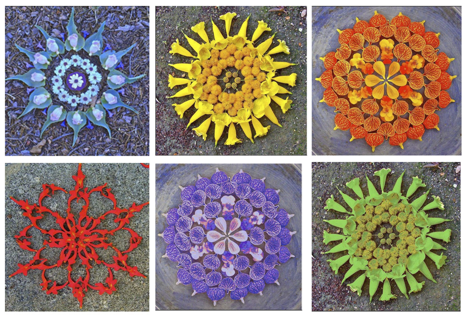 Color Mandalas