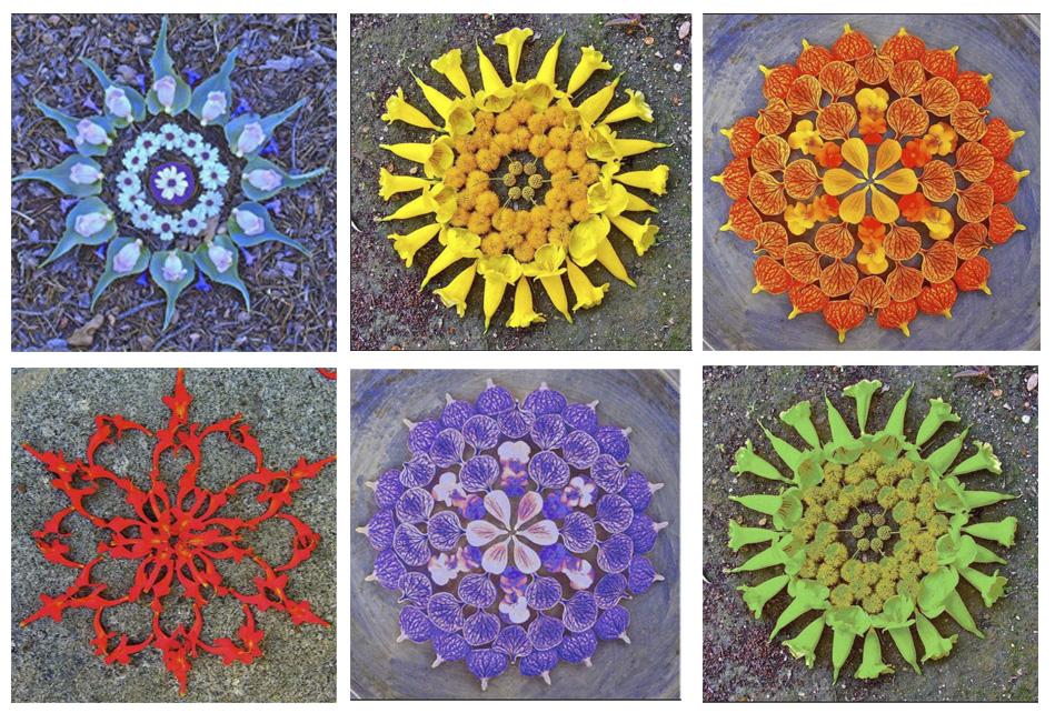 Color Mandalas