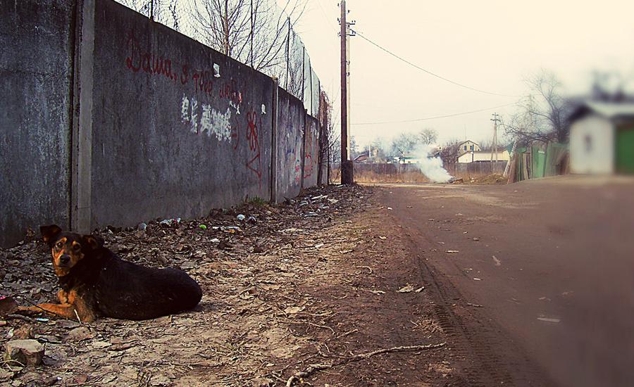 Borispol05