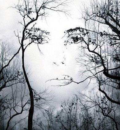 Træer ansigt
