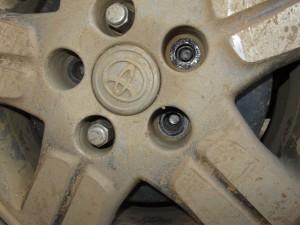 Sam Nea колесо 1