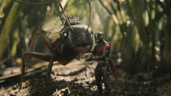 Ant-Man-Movie-