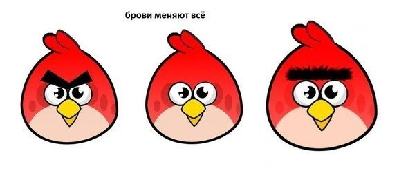 1-брови-меняют-все-демотиватор-про-брови-angry-birds
