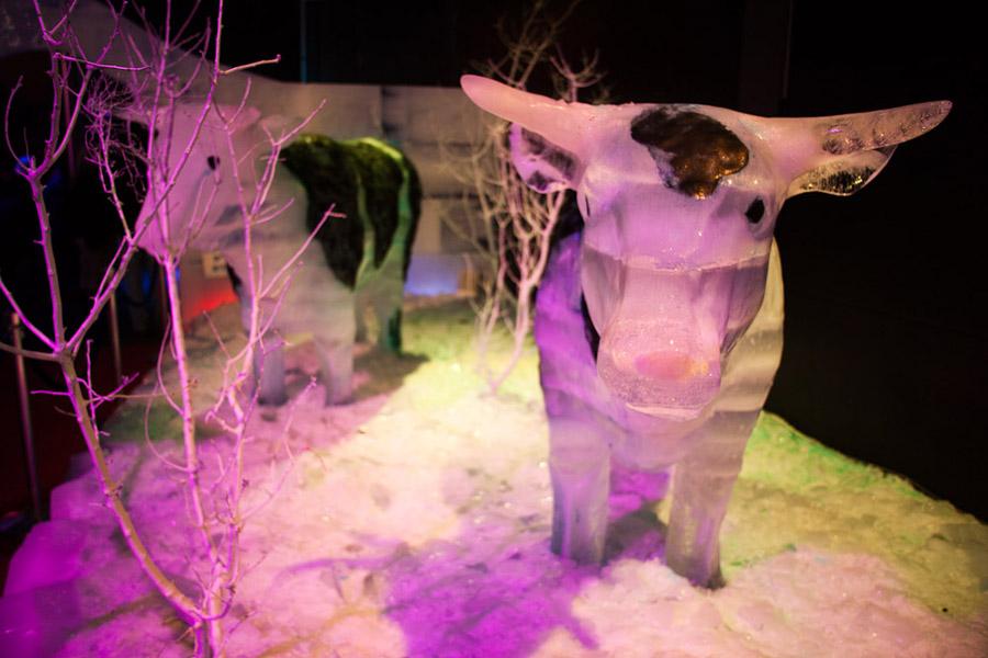 Выставка ледяных скульптур в Иерусалиме