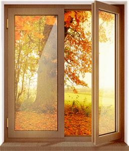 cvetnoe_okno