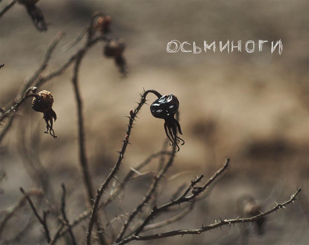 Песнь о мечтающем осьминоге