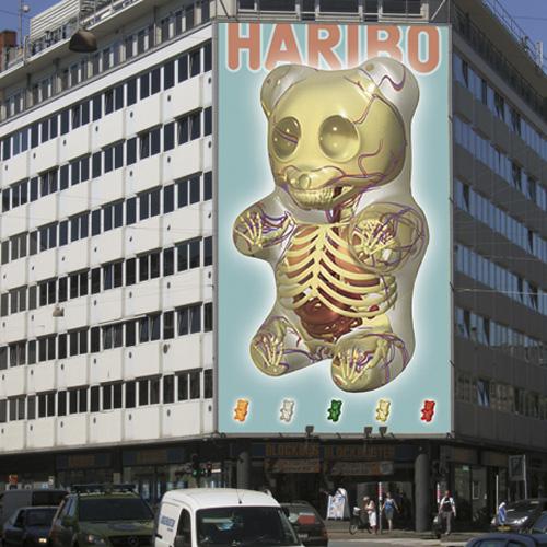 Haribo Anatomy