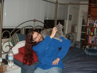 pet shoulder kitty
