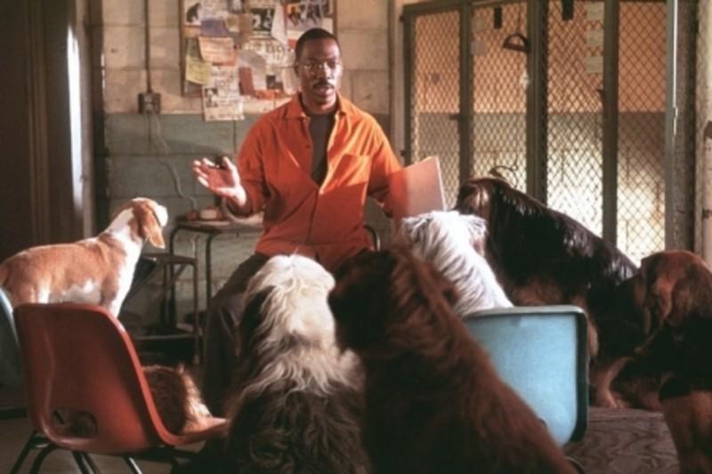 Кадр из фильма Доктор Дулиттл.