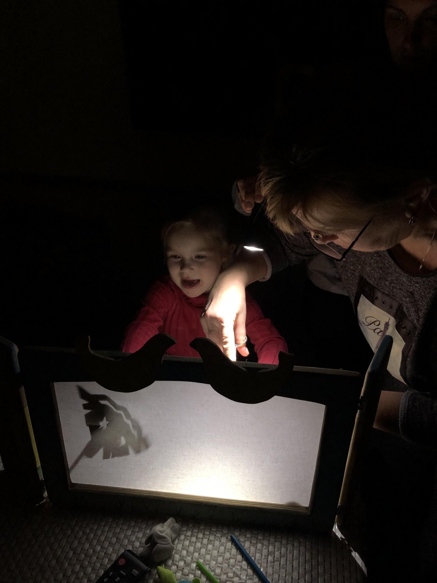 Ваш ребенок боится темноты? Поиграйте с ним в теневой театр и страх постепенно пройдет из-за смены ассоциаций. На фото моя мама и моя племянница ставят теневой спектакль.