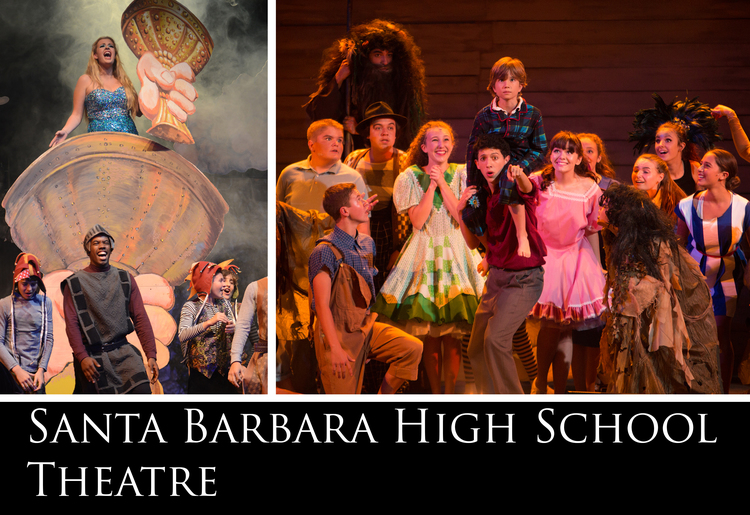 И в каждой российской школе будет школьный театр как в Санта-Барбаре.