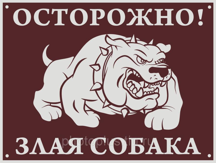 136314289_w640_h640_tablichka_dog_2