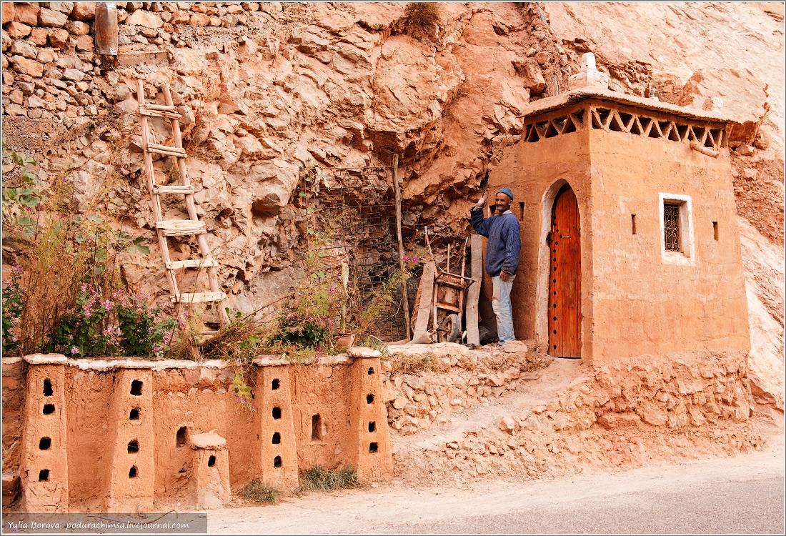 612b0cf243a6 Мандариновый рай. Марокко. Ноябрь 2013 • Форум Винского