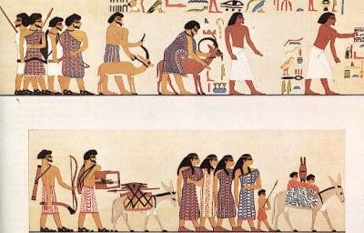 Член др семитского племени