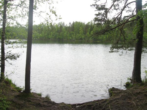 ленинградская область озеро блесна
