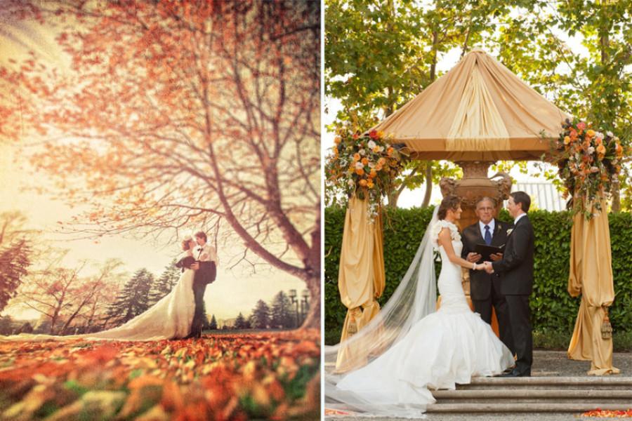 autumn-wed-photo-5