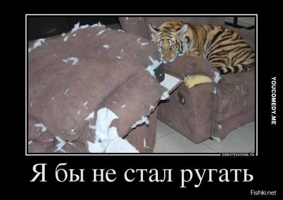 big_46c6dbd614ad1650bc817fe72f8e9d40