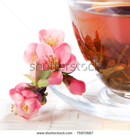 stock-photo-cup-with-herbal-tea-with-flower-on-saucer-75972667