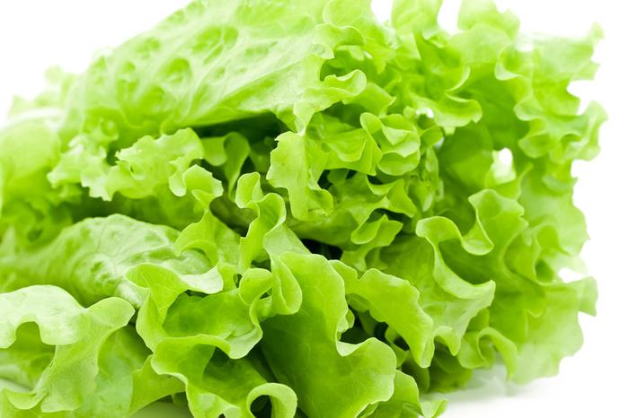 Фото листьев салата