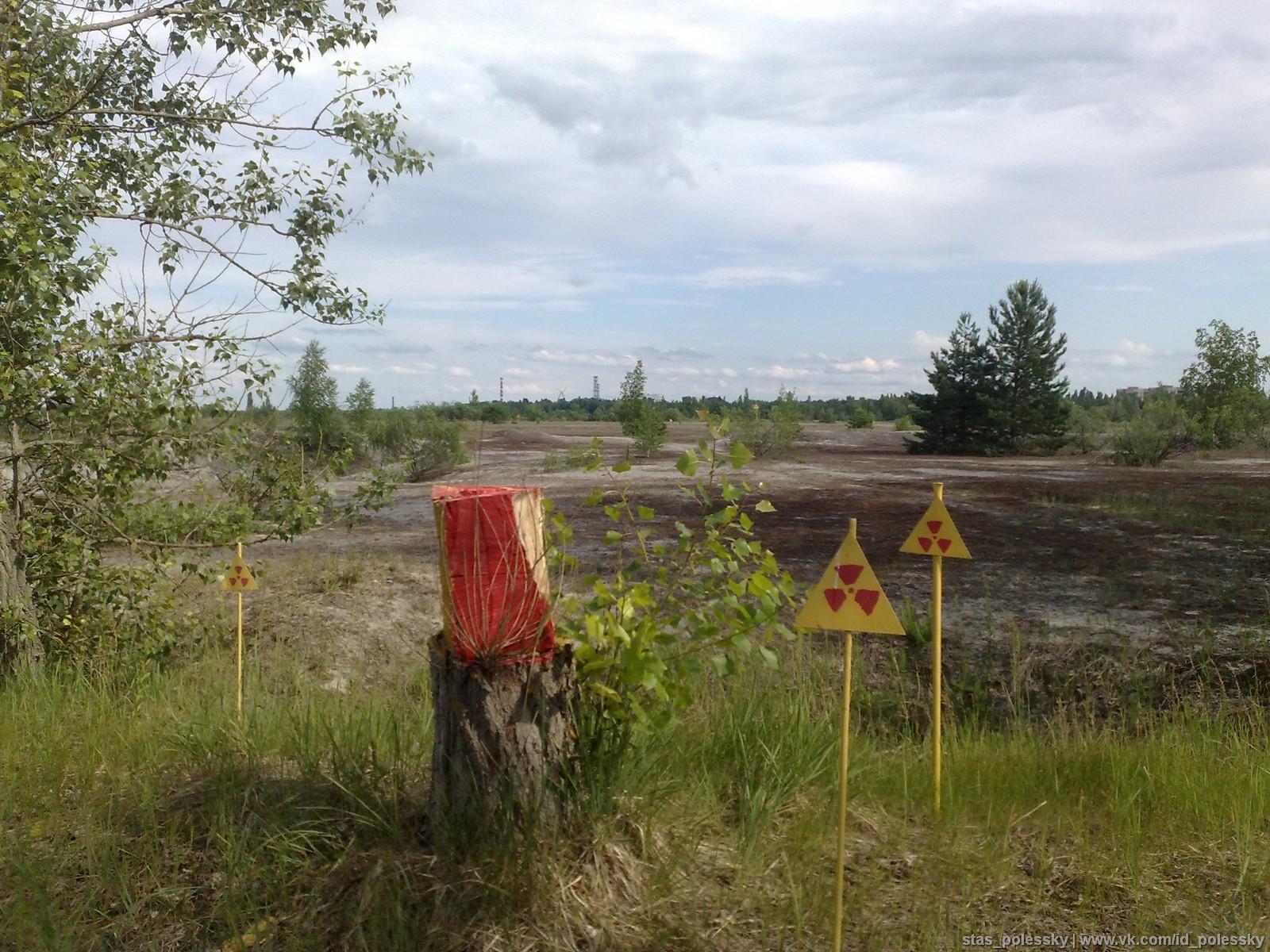 Беременные прописанные в чернобыльской зоне