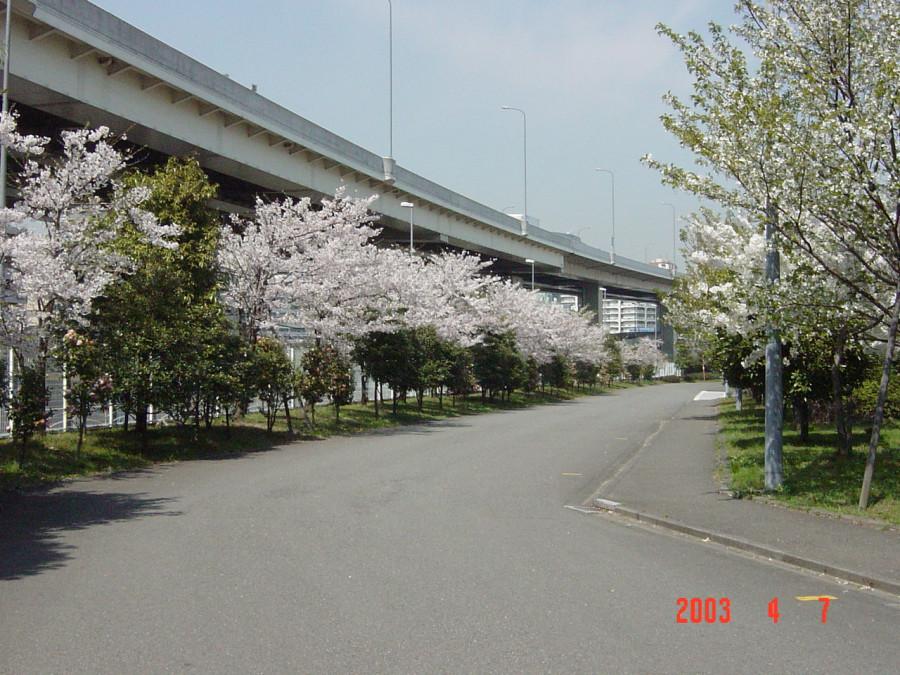 один из городских пейзажей