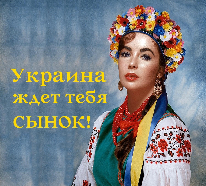 Украина ждет тебя, сынок!