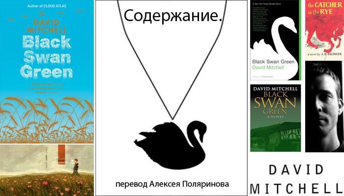 Дэвид Митчелл Блэк Свон грин Black Swan Green на русском перевод