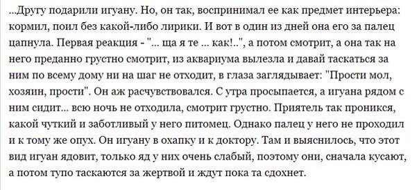 story-песочница-790135