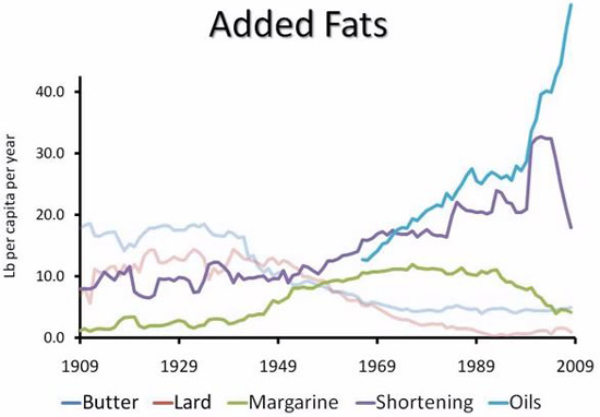 09-fat-consumption-in-usa