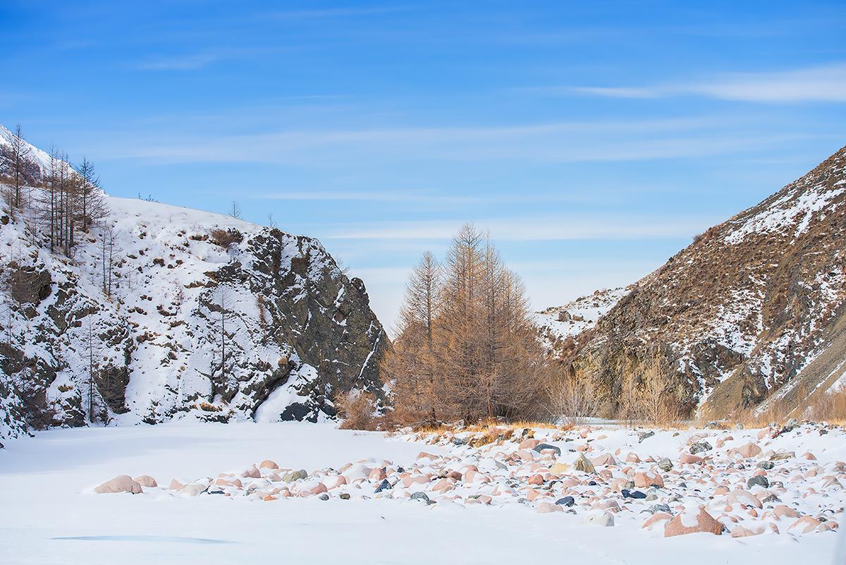 Mongolia_20140319_1874.jpg