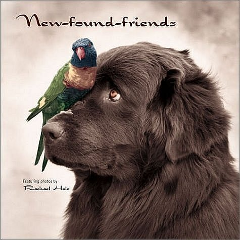 newf_parrot