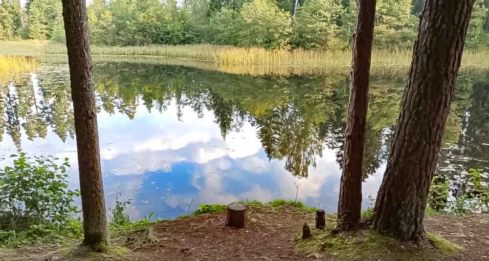 Место рыбалки на берегу озера Ванадзиня/Риделю, где Виктор Цой провел последние пять часов своей жизни