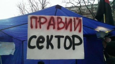 cektor_480_270