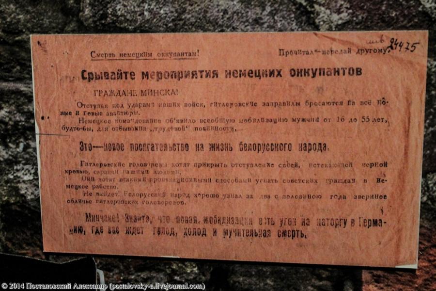 IMG_0796 (Копировать) (Копировать)