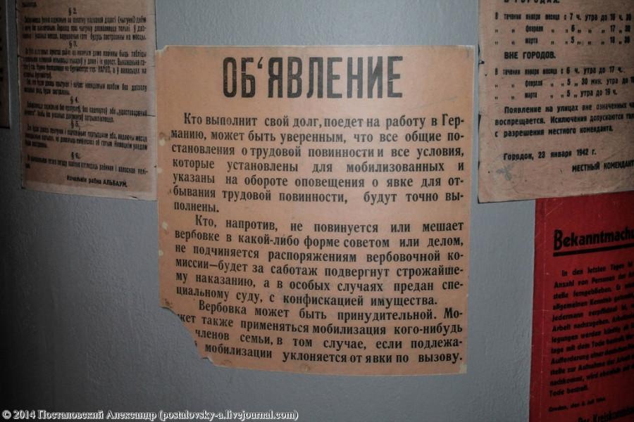 IMG_0761 (Копировать) (Копировать)
