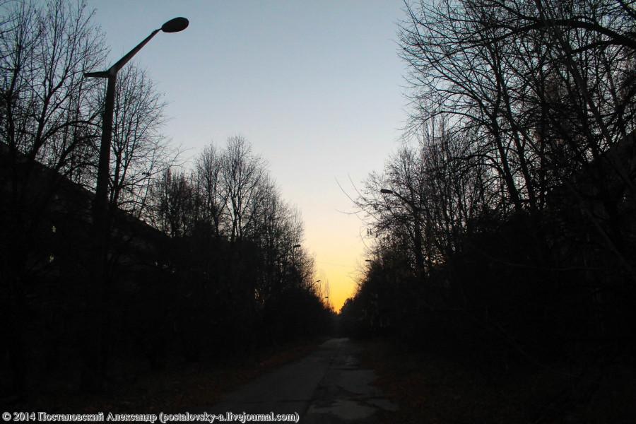 IMG_7290 (Копировать)