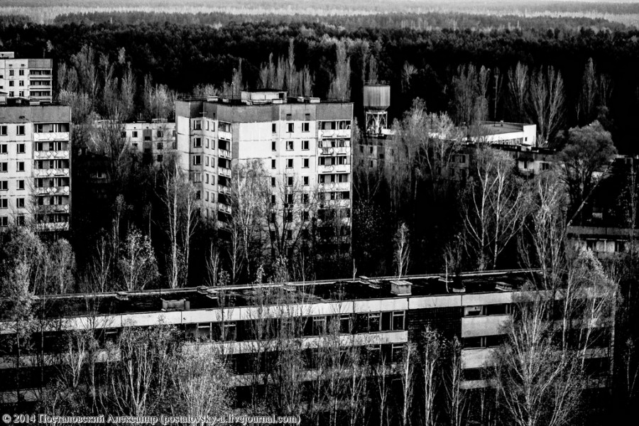 IMG_6129 (Копировать) (Копировать)