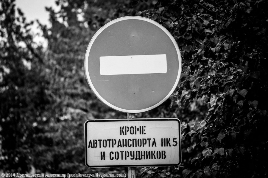 IMG_5156 (Копировать) (Копировать)