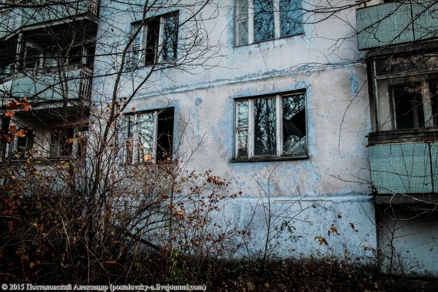 IMG_7130 (Копировать) (Копировать)