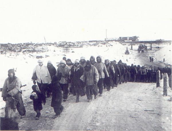 Пленные немцы из состава 11-го пехотного корпуса генерал-полковника Карла Штрекера, сдавшиеся в плен 2 февраля 1943 год