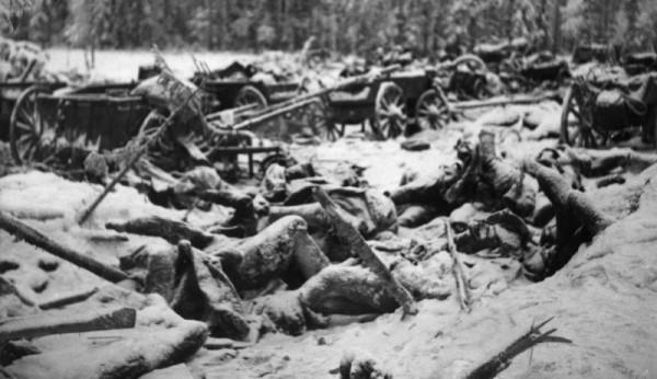 Вид на разбитый советский обоз в районе финской деревни Суомуссалми