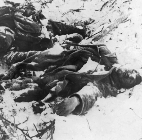 Тела советских солдат у дороги на Карельском перешейке