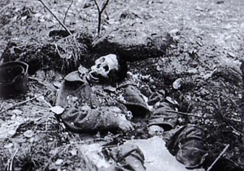 Тело советского солдата в наполненном льдом окопе в Волховском болоте под Ленинградом.