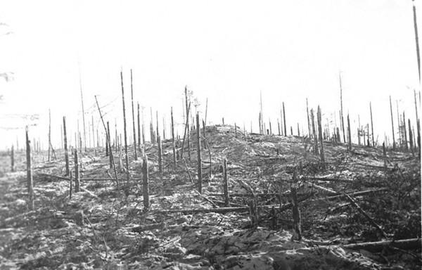 Вид взятой у финнов высоты 38,2. 1939г.