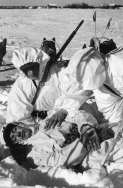 Финские солдаты везут раненого товарища на собачьей упряжке