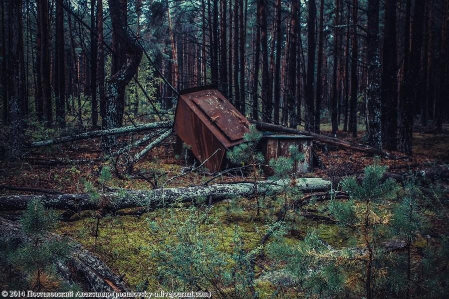 IMG_26в32 (14) (Копировать) (Копировать)