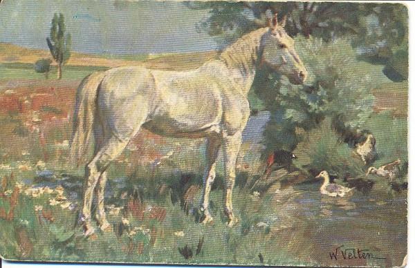 Лошадь и утята