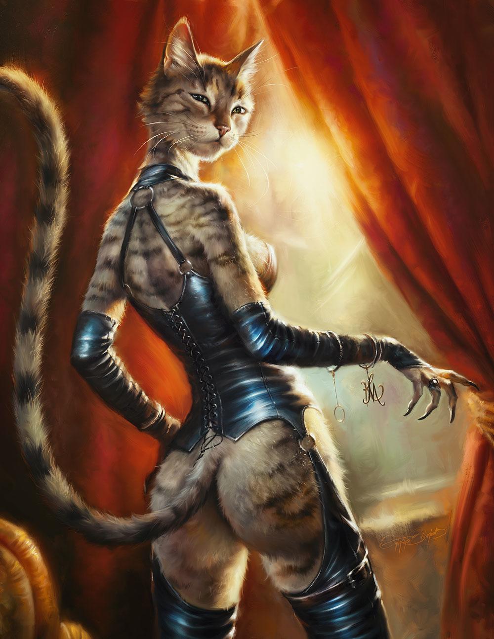 Кошки и коты Эльдара Закирова