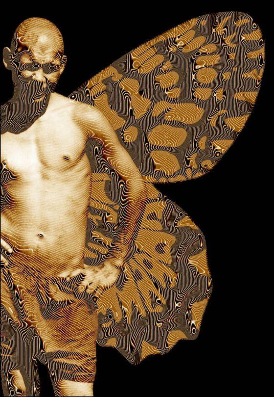 Фотоколлажи к Жизни насекомых Пелевина